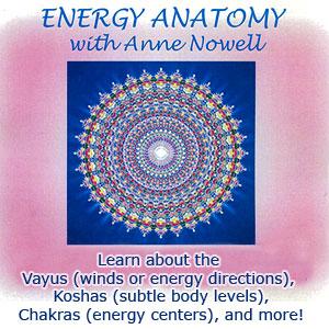 Energy Anatomy Workshop
