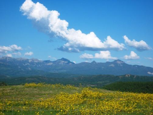 San Juan Mtns. CO