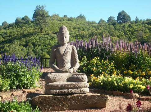 Summer Temple Garden