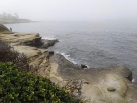Coastal Fog